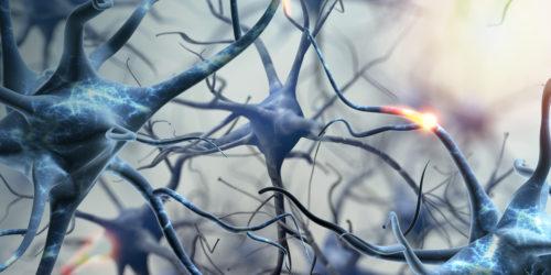 Neuroner i kontakt_blå